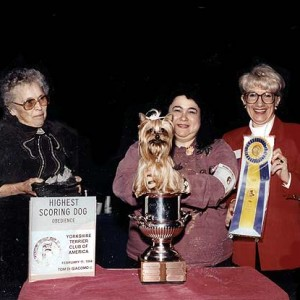 McNugget Winning High In Trial In NYC, 1992